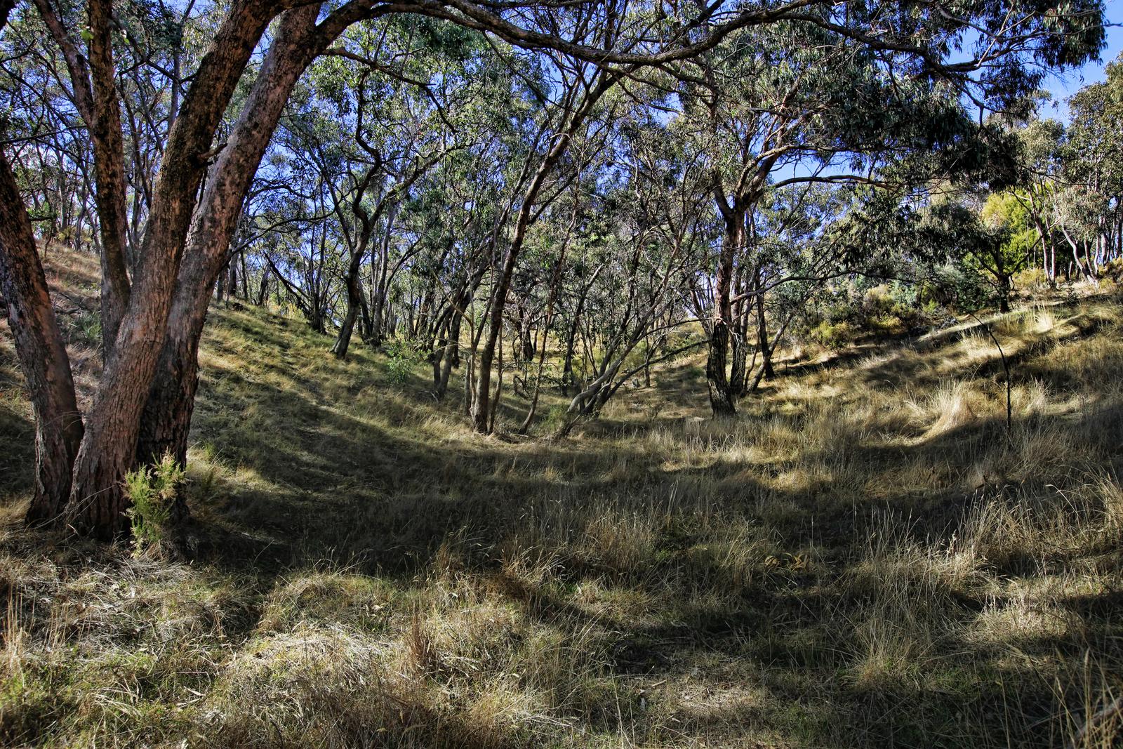 9 The Ridge Track, Metcalfe East 3444 - Image 12